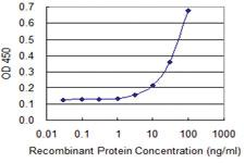 Anti-FICD Mouse Monoclonal Antibody [clone: 3F5]