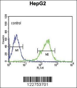 Anti-AHRR Rabbit Polyclonal Antibody