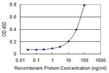 Anti-APPBP2 Mouse Monoclonal Antibody [clone: 4C2]