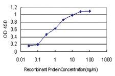 Anti-NUDT3 Mouse Monoclonal Antibody [clone: 3C5]