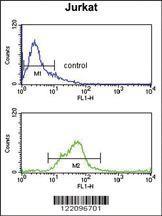 Anti-SH2D1B Rabbit Polyclonal Antibody