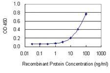 Anti-RNASEH2A Mouse Monoclonal Antibody [clone: 3G5-F5]