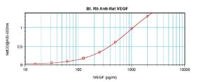 Sandwich ELISA: using 100 ul/well antibody solution, a concentration of 0.25 – 1.0 ug/ml of this antibody is required. In conjunction with Polyclonal Anti-Rat VEGF (38-206) as a capture antibody, allows the detection of at least 0.2 – 0.4 ng/well of recombinant Rat VEGF.
