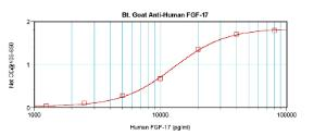 Sandwich ELISA: using 100 ul/well antibody solution, a concentration of 0.25 – 1.0 ug/ml of this antibody is required. In conjunction with Polyclonal Anti-Human FGF-17 (38-286) as a capture antibody, allows the detection of at least 0.2 – 0.4 ng/well of recombinant hFGF-17.