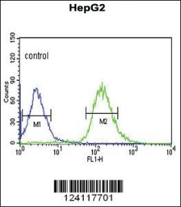 Anti-WAC Rabbit Polyclonal Antibody