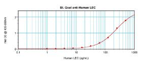 Sandwich ELISA: using 100 ul/well antibody solution, a concentration of 0.25 – 1.0 ug/ml of this antibody is required. In conjunction with Polyclonal Anti-Human LEC (38-293) as a capture antibody, allows the detection of at least 0.2 – 0.4 ng/well of recombinant hLEC.