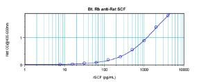 Sandwich ELISA: using 100 ul/well antibody solution, a concentration of 0.25 – 1.0 ug/ml of this antibody is required. In conjunction with Polyclonal Anti-Rat SCF (38-251) as a capture antibody, allows the detection of at least 0.2 – 0.4 ng/well of recombinant rat SCF.