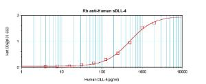 Sandwich ELISA: (using 100ul/well antibody solution) a concentration of 0.5 - 2.0 ug/ml of this antibody is required. This antibody, in conjunction with Biotinylated Anti-Human sDLL-4 (38-280) as a detection antibody, allows the detection of at least 0.2 - 0.4 ng/well of recombinant hsDLL-4.