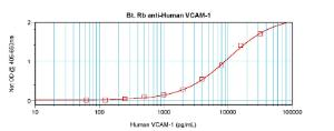 Sandwich ELISA: using 100 ul/well antibody solution, a concentration of 0.25 – 1.0 ug/ml of this antibody is required. In conjunction with Polyclonal Anti-Human VCAM-1 (38-270) as a capture antibody, allows the detection of at least 0.2 – 0.4 ng/well of recombinant hVCAM-1.