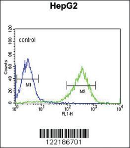 Anti-HFE2 Rabbit Polyclonal Antibody
