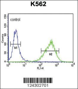 Anti-UPK1B Rabbit Polyclonal Antibody