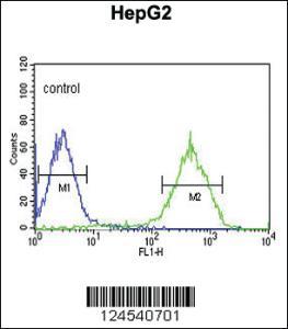 Anti-NDUFA10 Rabbit Polyclonal Antibody