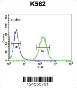 Anti-SUPV3L1 Rabbit Polyclonal Antibody