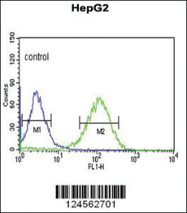 Anti-ZNF202 Rabbit Polyclonal Antibody