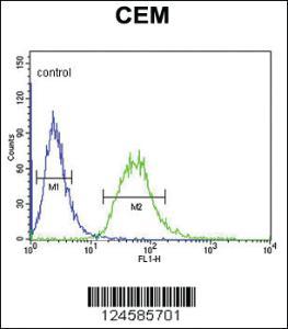 Anti-CA6 Rabbit Polyclonal Antibody