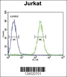 Anti-GNAT1 Rabbit Polyclonal Antibody