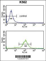 Anti-APOBEC3F Rabbit Polyclonal Antibody