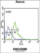 Anti-C19orf18 Rabbit Polyclonal Antibody