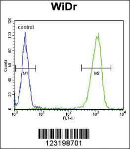Anti-PEX2 Rabbit Polyclonal Antibody
