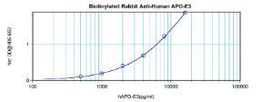 Anti-APOE Rabbit Polyclonal Antibody (Biotin)