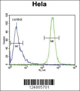 Anti-IMP3 Rabbit Polyclonal Antibody