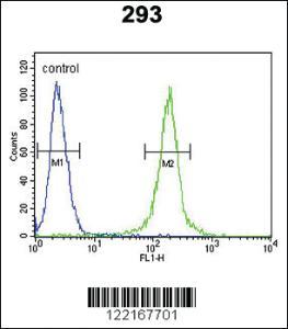 Anti-AMH Rabbit Polyclonal Antibody