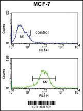 Anti-NR1H3 Rabbit Polyclonal Antibody