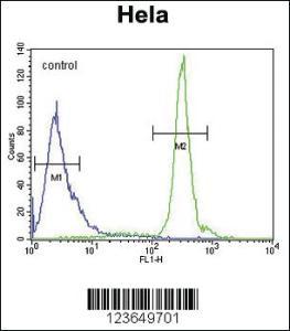 Anti-KDM4B Rabbit Polyclonal Antibody
