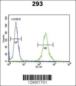 Anti-MRAP Rabbit Polyclonal Antibody