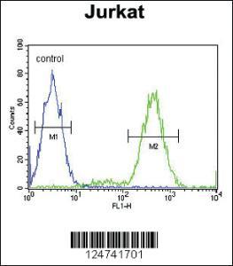 Anti-IMMP2L Rabbit Polyclonal Antibody