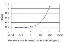 Anti-TRAF3IP2 Mouse Monoclonal Antibody [clone: 4A3]