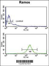 Anti-C7 Rabbit Polyclonal Antibody