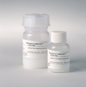 Protein G Sepharose™ 4 Fast Flow Affinity Chromatography Media, GE Healthcare
