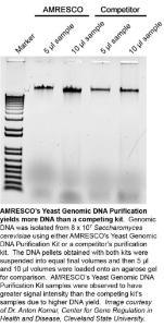 VWR Life Science Yeast Genomic DNA Purification Kit