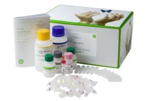 illustra triplePrep Kit, Cytiva (formerly GE Healthcare Life Sciences)