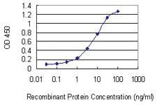 Anti-DAZAP2 Mouse Monoclonal Antibody [clone: 3G21]