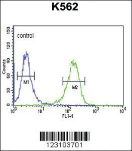 Anti-C21ORF29 Rabbit Polyclonal Antibody