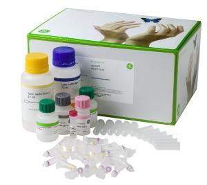 illustra triplePrep Kit, GE Healthcare