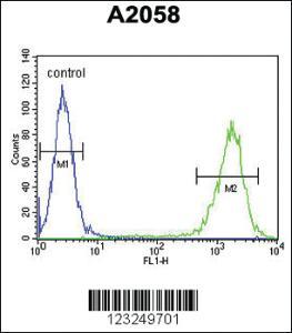 Anti-PTMS Rabbit Polyclonal Antibody