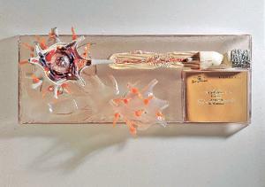 SOMSO Neuron Model