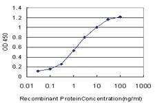 Anti-TRIM16 Mouse Monoclonal Antibody [clone: 5F4]
