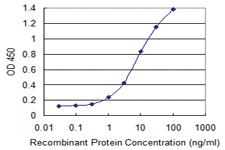 Anti-VAMP5 Mouse Monoclonal Antibody [clone: 3D4]
