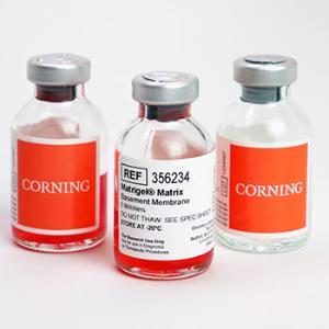 Corning® Matrigel® Matrix,  Phenol Red Free, Corning®