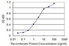 Anti-CSPG5 Mouse Monoclonal Antibody [clone: 4G6]