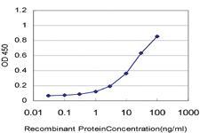 Anti-B3GNT2 Mouse Monoclonal Antibody [clone: 1A8]