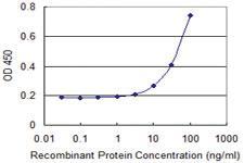 Anti-KLK4 Mouse Monoclonal Antibody [clone: 2A4]