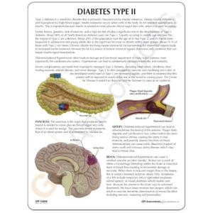 GPI Anatomicals® Type II Diabetes Model