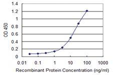 Anti-GNA14 Mouse Monoclonal Antibody [clone: 2H8]