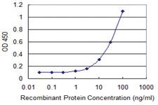 Anti-ACOT8 Mouse Monoclonal Antibody [clone: 3F1]