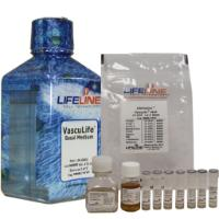 VascuLife® VEGF Medium Complete Kit